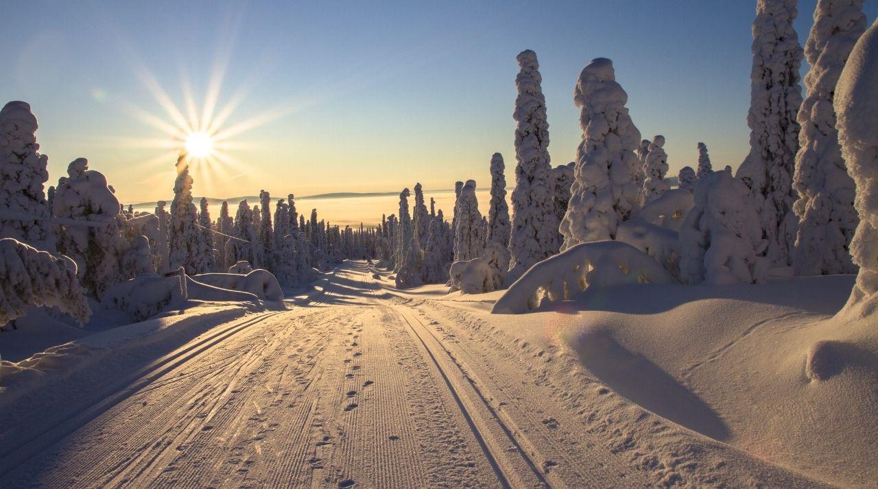 Lapponia: Una Luna di Miele in Svezia tra i ghiacci