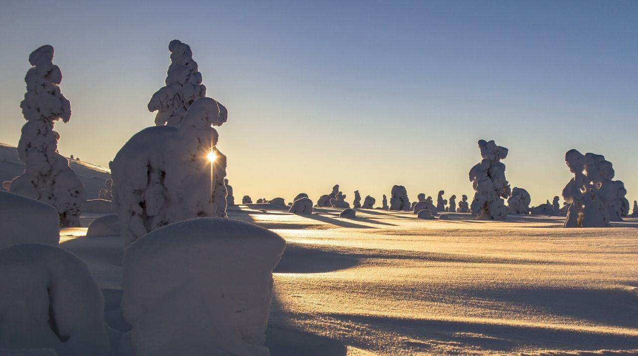 Viaggio di nozze in Norvegia e in Finlandia: la Lapponia