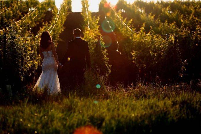 Wine Wedding copertina